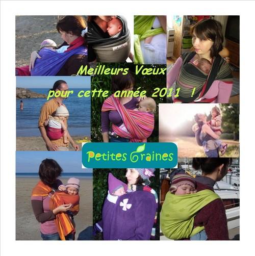 voeux2011-2.jpg